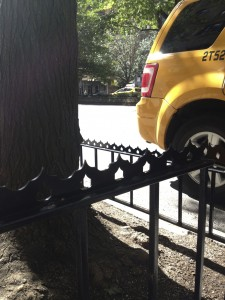 Would you want your preschooler practicing her balancing skills on one of these razor edges? We didn't think so. New York City no longer issues tree guard permits to guard designs with excessively sharp edges or sit spikes.