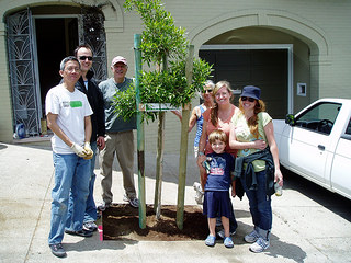 Photo courtesy of Friends of the Urban Forest