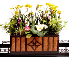 Curb Allure tree guard accessories: garden planter